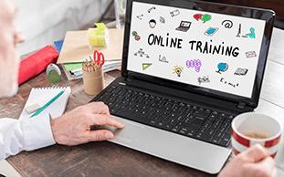 Business L&D - 04 - 2000s online training
